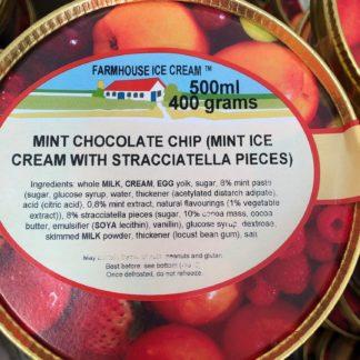Mint Chocolate Chip Lid